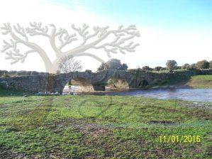 aspecto puente de Peñaserracín con crecida de rivera