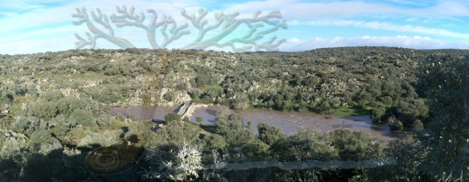 Panorámica del entorno del Puente Mocho