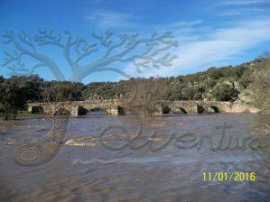 Crecia extraordinaria de la rivera de Cañedo