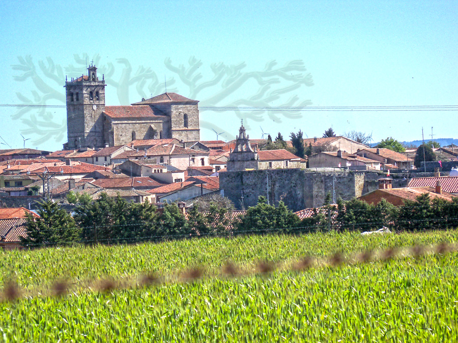 Fortaleza y las iglesias de San Miguel y Santa María, de Ledesma