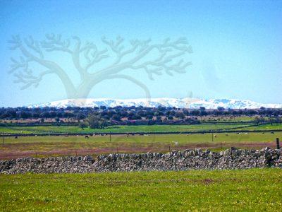 sierra de Bejar vista desde Ledesma